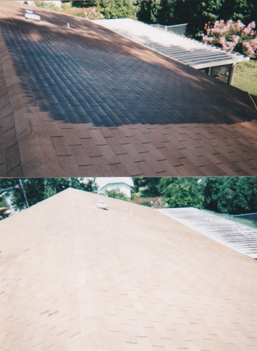 Pressure Washing- Before and After Photos-12239938_830269347085782_8844365495171071783_n.jpg