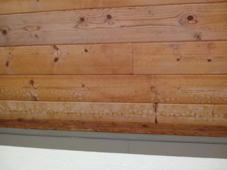Tongue and groove soffit/ceiling-20200914_102620_1600121594420.jpg