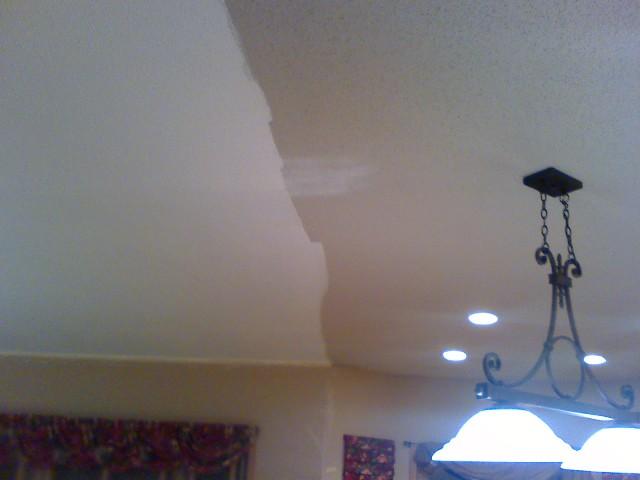 Painting Pop Corn Ceilings-ceiling-paint2.jpg