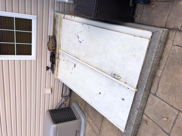 Merveilleux Bilco Door Re Paint Door.jpeg