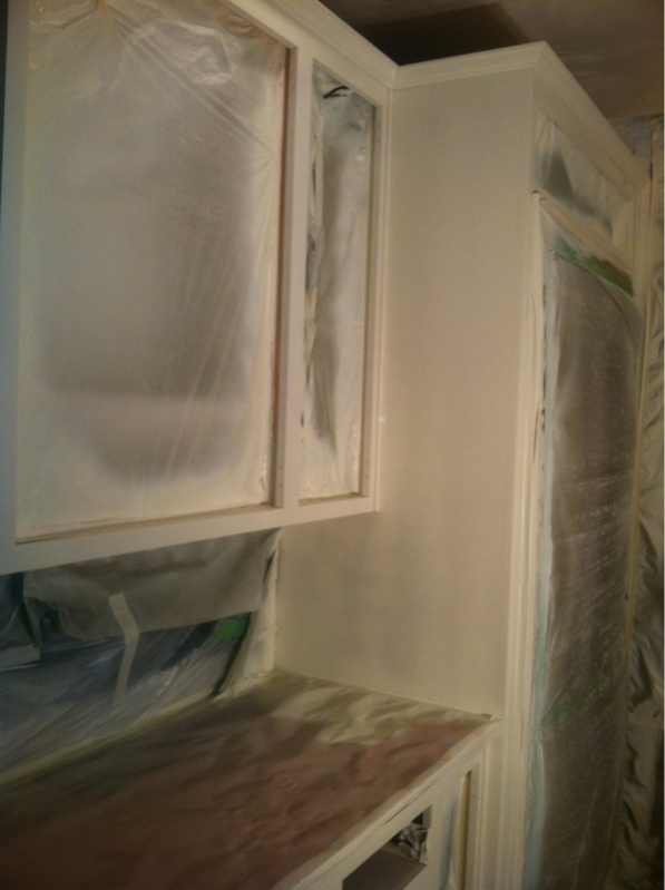 First Cabinet Job.. Spray Cabinet Coat? Image 2672630591