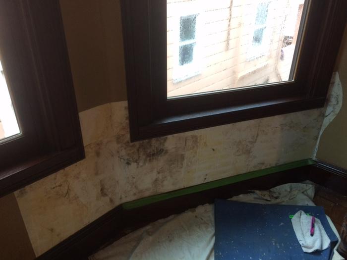 Wallglazeing and Restoration Work-image-3540325702.jpg