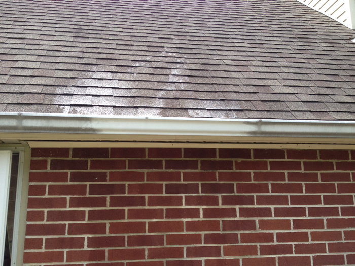 Pressure Washing- Before and After Photos-image-4187070101.jpg