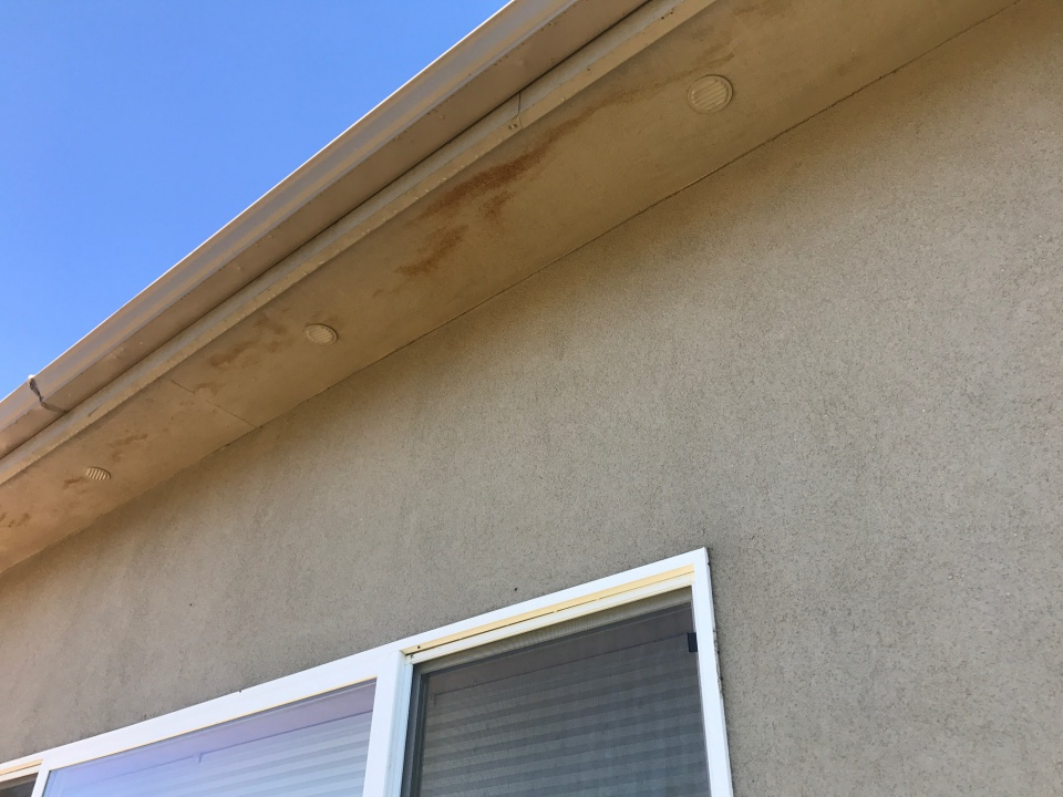 Exterior Stain Still Coming Through-img_1370.jpg