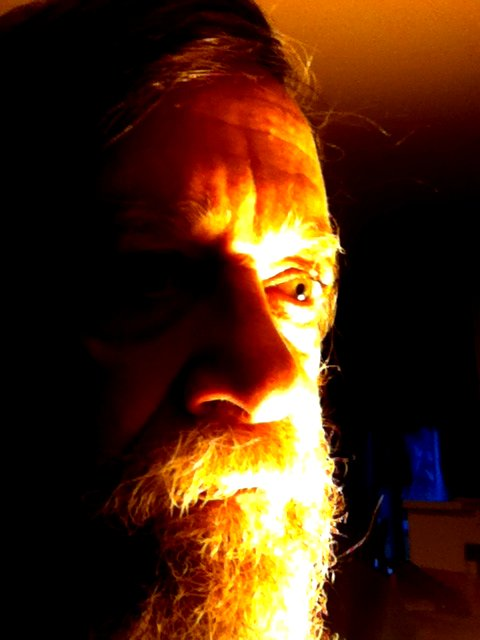 Weekly Photo Assignment  #3 - Self Portrait-itoyselfie-assignment3.jpg