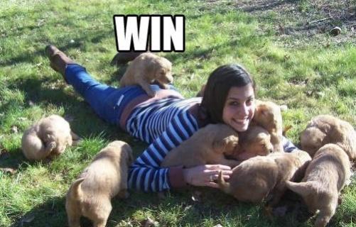 Just Post Funny Pics-win.jpg
