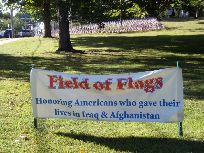 Field Of Flags 1