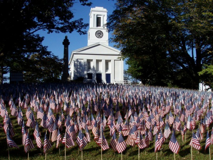 Field Of Flags 2